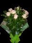 12 Rosas Champanhe
