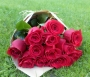 12 Rosas Vermelhas