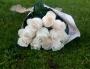 20 Rosas Brancas