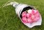 20 Rosas Côr de Rosa