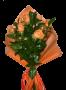 7 Rosas Salmão