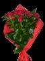 7 Rosas Vermelhas